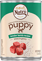 Nutro Puppy Wet Dog Food