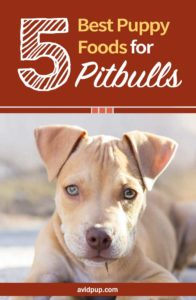 Top 5 Best Puppy Foods for Pitbulls