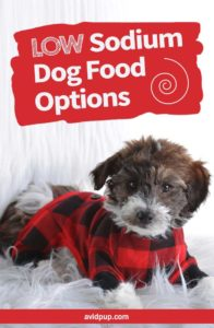 Low Sodium Dog Food Options, Best Picks (5 dry & 2 canned)