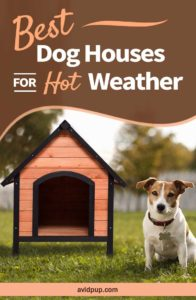 Top 5 Best Dog Houses For Hot Weather, Summer & Warm Climates