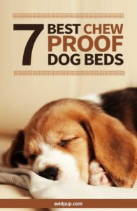 Top 7 Best Chew Proof Dog Beds