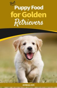 Best Puppy Food for Golden Retrievers,.. (7 top picks)