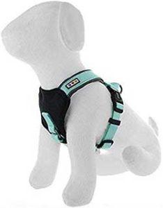 Pawtitas Reflective Padded Dog Harness