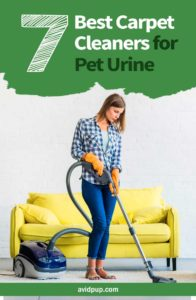 Top 7 Best Carpet Cleaners for Pet Urine (stains & odor)
