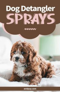 Top 7 Best Dog Detangler Sprays to Reduce Matted Fur and Loosen Knots
