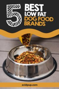 Top 5 Best Low Fat Dog Food Brands, Over the Counter & on Prescription