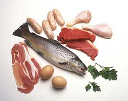 primary protein sources, good fats for dog food