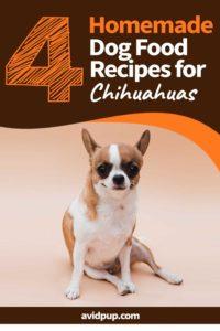Homemade Dog Food for Chihuahuas .. (4 Recipes)