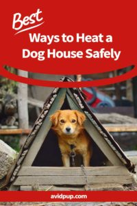 Best Ways to Heat a Dog House Safely (Without Electricity)