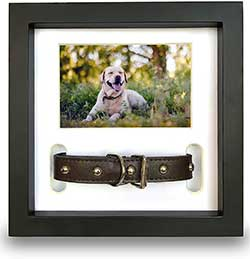 Pawceptive Pet Memorial Picture Frame with 3 Display Options for Dog or Cat Loss - Collar Mount, Memory Hanger or Loving Remembrance Message - Sympathy Keepsake Photo Gift for a Grieving Owner