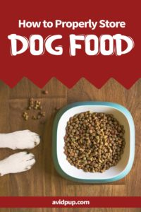 How to Properly Store Dog Food and 10 Mistakes to Avoid