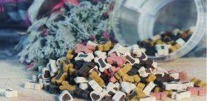 improperly stored dog food