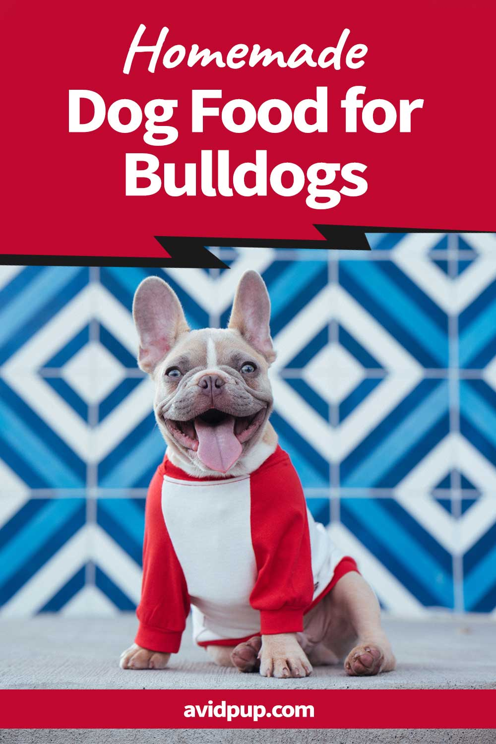 Homemade Dog Food for Bulldogs: What Do They Eat and What Should They Avoid?