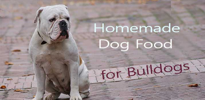 Homemade dog food for Bulldogs