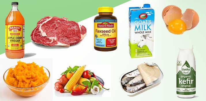 food boosters to add to a dogs meal