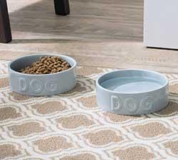 2 food dog bowls