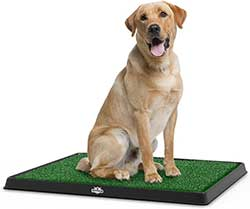 PETMAKER Artificial Grass Puppy Pad - Portable Training Pad System for Dogs and Pets, Housebreaking Supplies